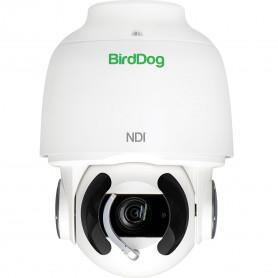 BIRDDOG EYES A200 caméra PTZ